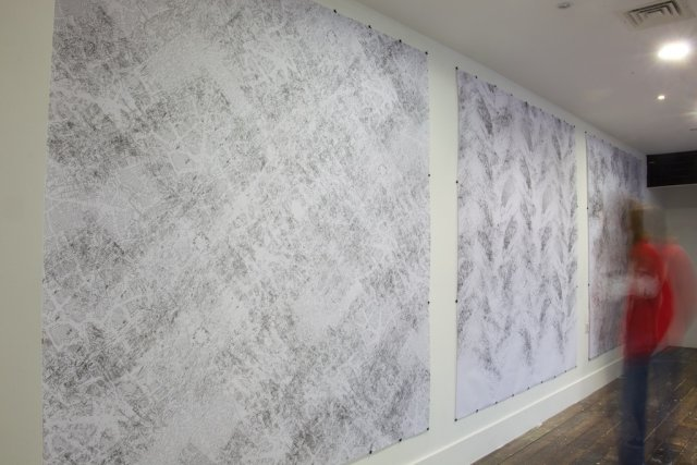 """Ashokkumar Mistry Bridge4 from """"Field notes"""" an installation of large scale digital drawings using the Reaction-Diffusion theory of Alan Turing to explore change and value."""