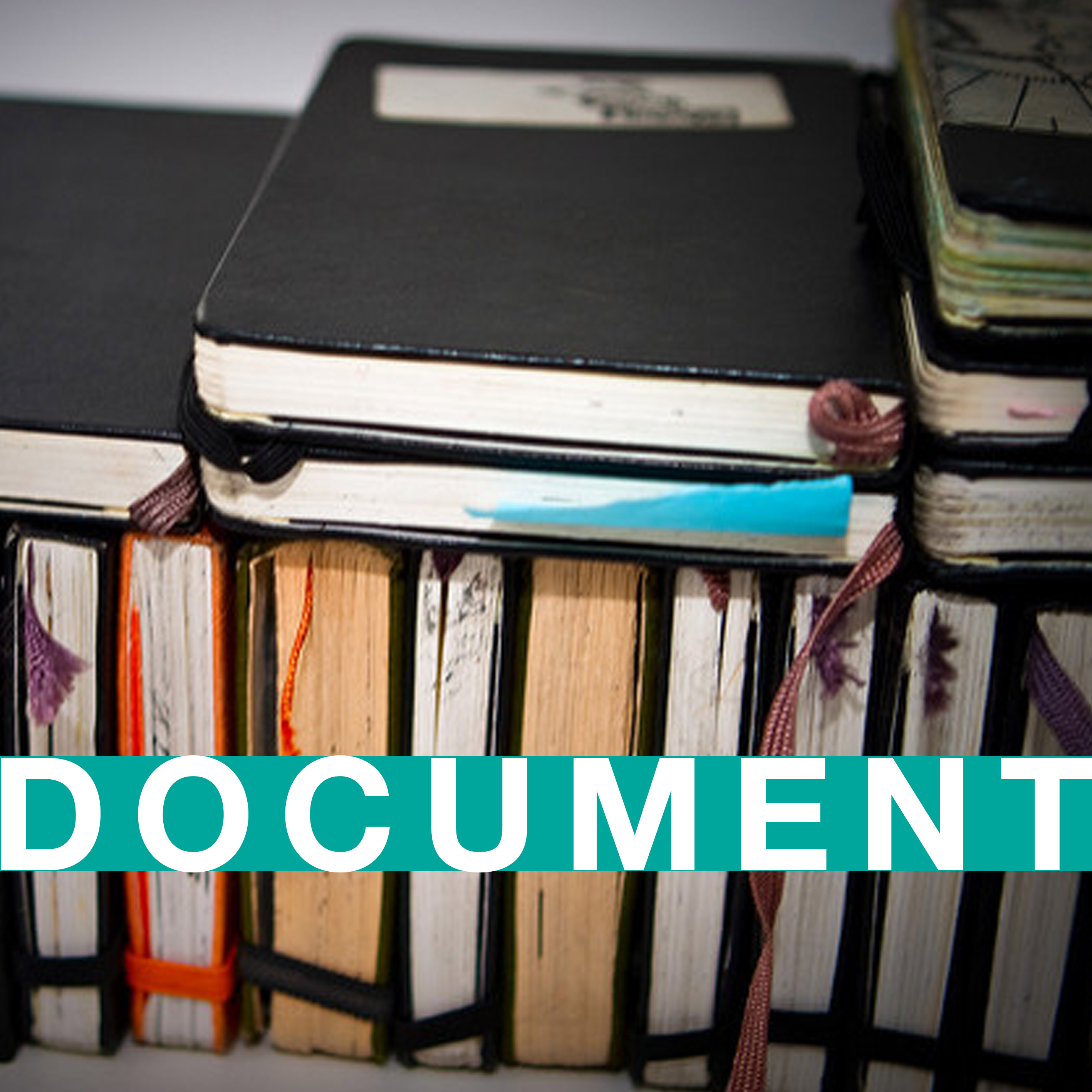 Document: a visual record