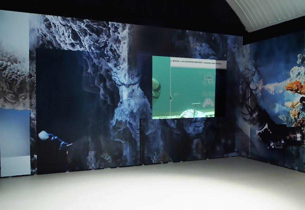 P R O T E U S Digital print, projection/flatscreen, video: 12min : 03sec 2015, dimensions variable (installed at Wysing Arts Centre, Cambridge & Podium, Oslo) www.joeyholder.com/p-r-o-t-e-u-s