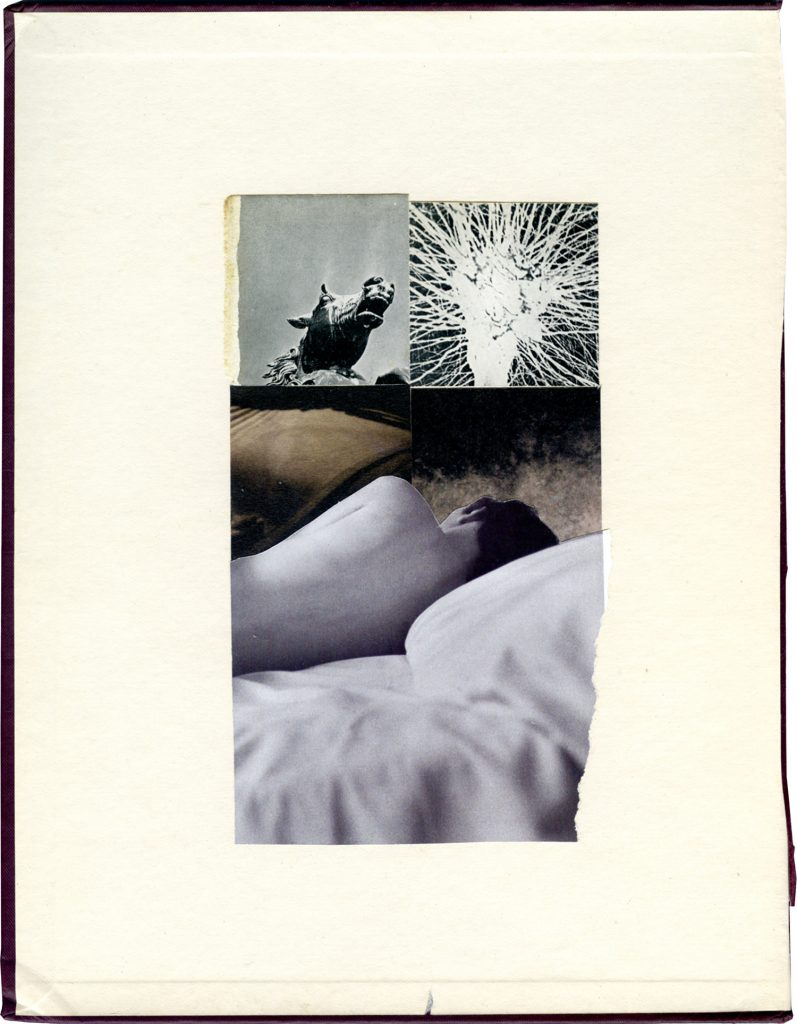 Mark Watkins, Dreamscape