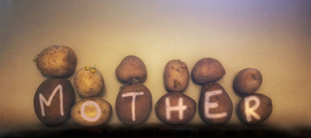 Tracey Kershaw, My Mother & Other Potato Peelers