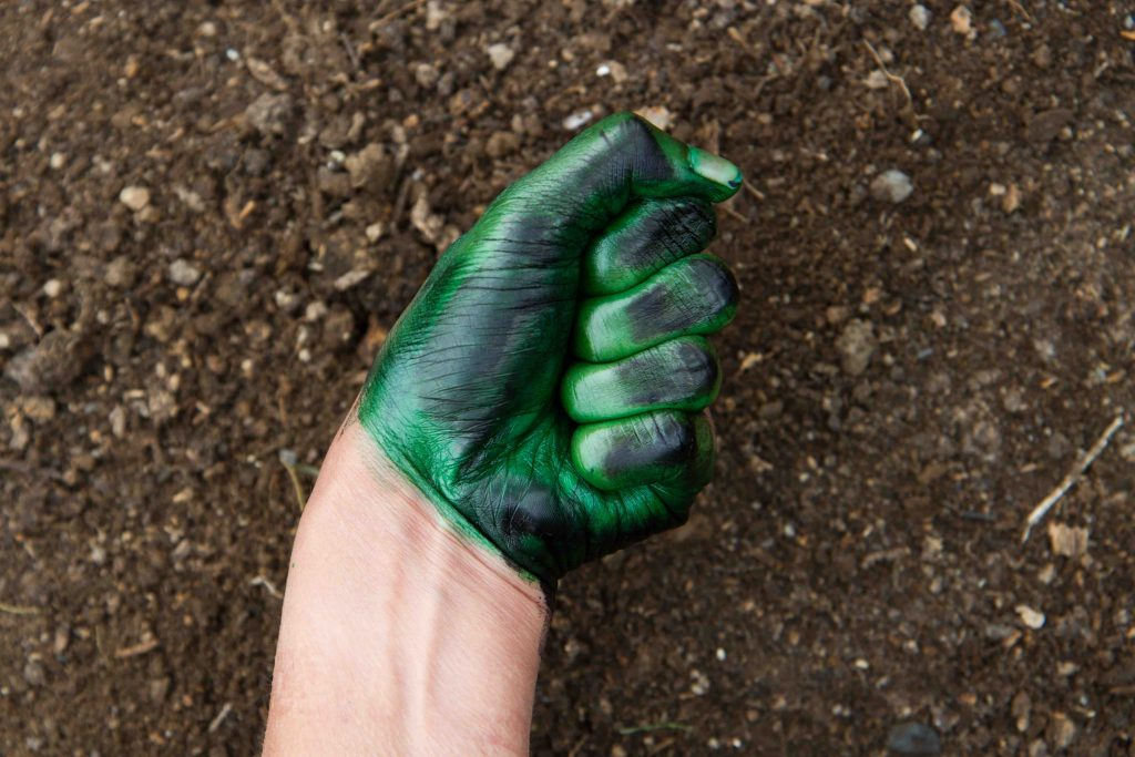 Mita Solanky, 'Garden Walks' process photo from Vegetable Agenda residency 2016